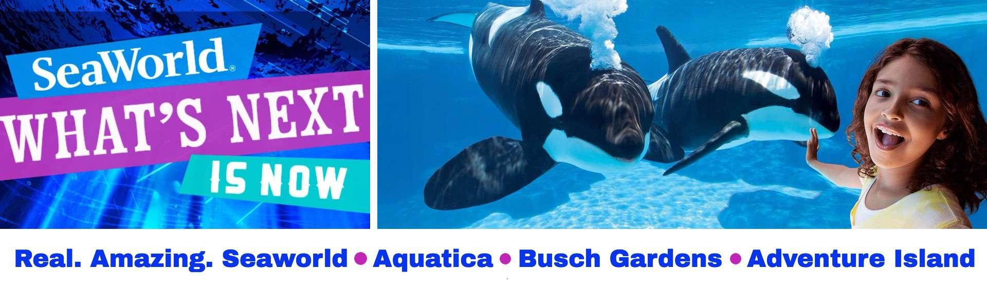 KGS Discount Attraction Tickets Orlando Seaworld HS