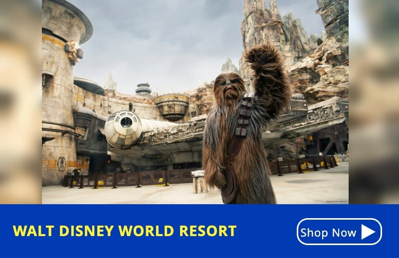 Discount Disney Tickets Orlando - WDW Walt Disney Resort - KGS