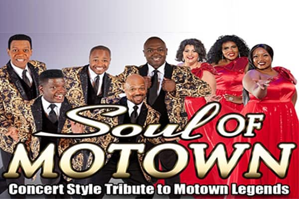 KGS-pigeon-forge-soul-of-mowtwon